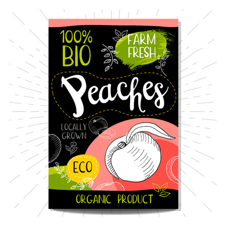 locally: Colorful label in sketch style, food, spices, black background. Peaches Fruits. Bio, eco, farm, fresh locally grown Hand drawn illustration. Illustration