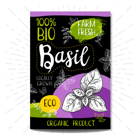 locally: Colorful label in sketch style food spices, black background. Basil. Vegetables. Bio, eco, farm, fresh. locally grown. Hand drawn illustration