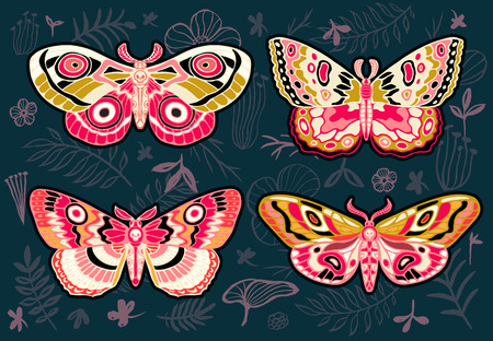 Collection of colorful butterflies, night tropical moths hawkmoth on floral background, vector insect set, vintage style, wings, flowers, leaves. Hand drawn vector illustration