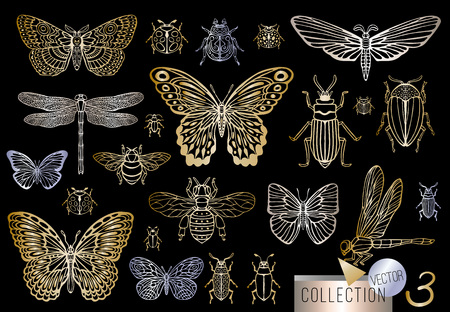 Big hand drawn golden line set of insects bugs