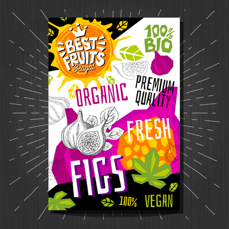 Food labels stickers set colorful sketch style fruits, spices vegetables package design.