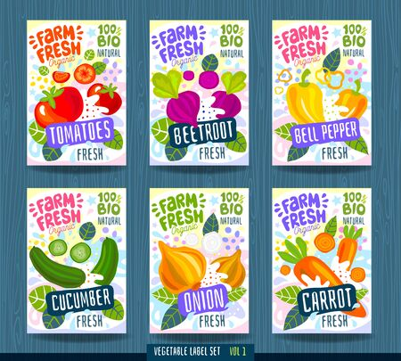 Abstract splash Food label template. Colorful brush stroke. Vegetables, fruits, spices, package design. Tomato, beet, beetroot, bell pepper, cucumber, onion carrot Organic fresh Vector illustration Illustration