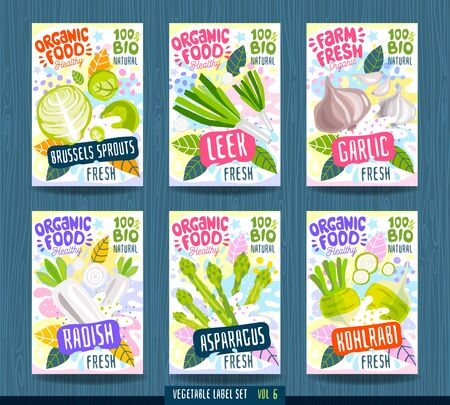 Abstract splash Food label template. Vegetables, fruits, spices, package design. Radish, asparagus, kohlrabi, leek, brussels sprouts garlic Organic fresh Vector illustration