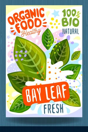 Abstract splash Food label template. Colorful brush stroke. Vegetables, herbs, spices, package design. Bay leaf, green. Organic fresh Vector illustration
