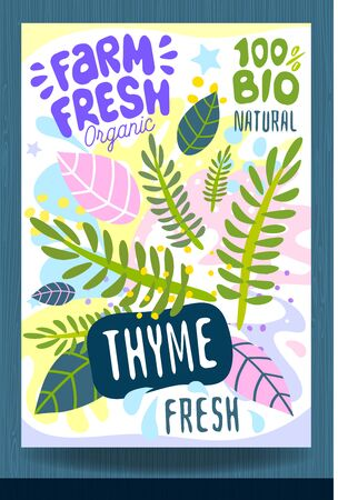 Abstract splash Food label template. Colorful brush stroke. Vegetables, fruits, spices, package design. Thyme, herbs, green Organic fresh Vector illustration