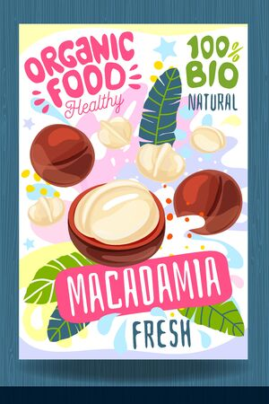 Abstract splash Food label template. Colorful brush stroke. Nuts, vegetables, herbs, spices, package design. Macadamia. Organic fresh Vector illustration Vector Illustration