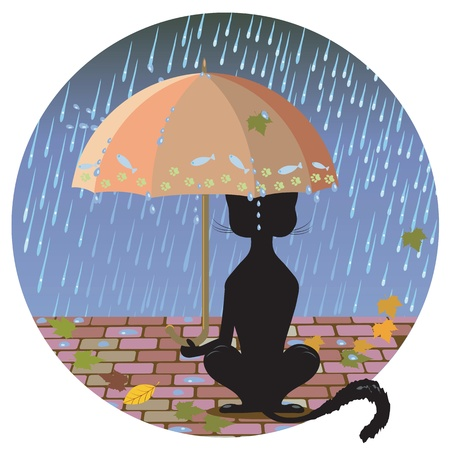 Cat at night with an umbrella in the rain Çizim