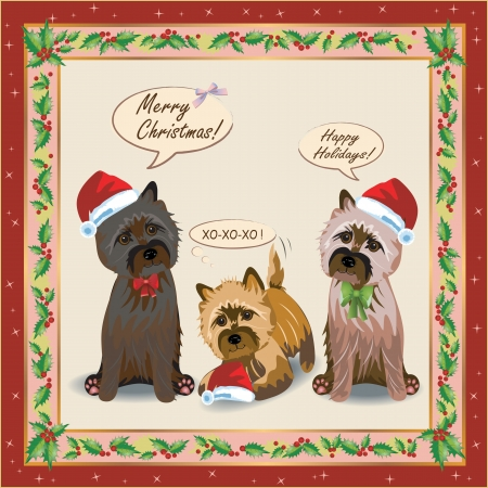 dog costume: Christmas seamless pattern with a cairnterrier and flowers