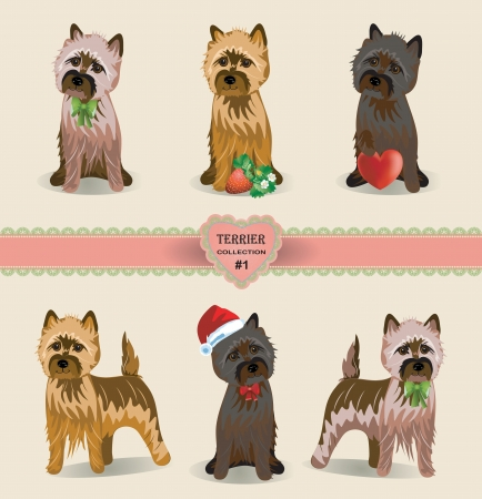 terrier: Vector Cairnterrier dog collection with heart and strawberry