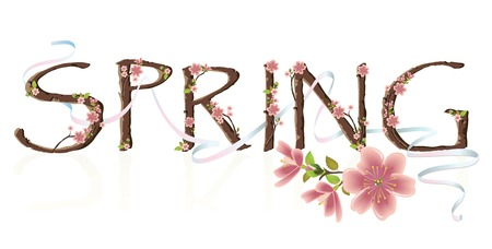 Cherry blossom spring vector text with ribbons Illustration