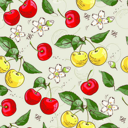 Vector pattern background with sweet red and yellow cherries fruits and blossom flowers