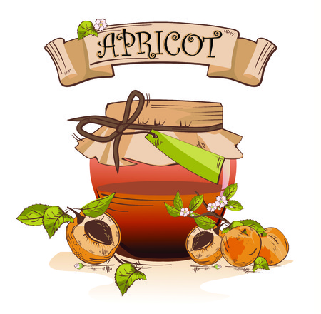 Vector illustration of apricot jam jar with fruits and banner Çizim