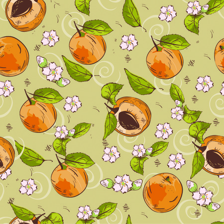 Vector pattern background with apricot fruits and blossom flowers Stok Fotoğraf - 36427315