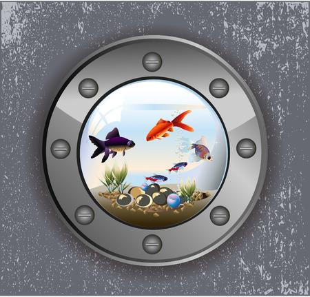 Vector illustration of batiskaf window aquarium with fishes and pebbles Çizim