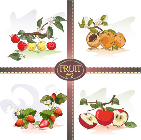 Vector set of fruits cherries, apricots, strawberries and apples Stok Fotoğraf - 38642799
