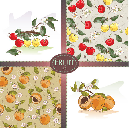 Vector set of seamless pattern background with cherries and apricots