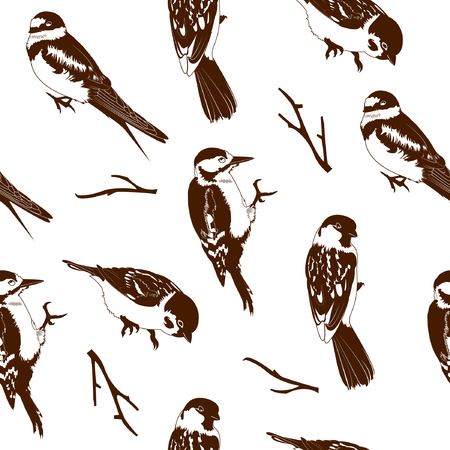 clutch: Illustration of birds seamless pattern. Beautiful brown birds on white background. Illustration
