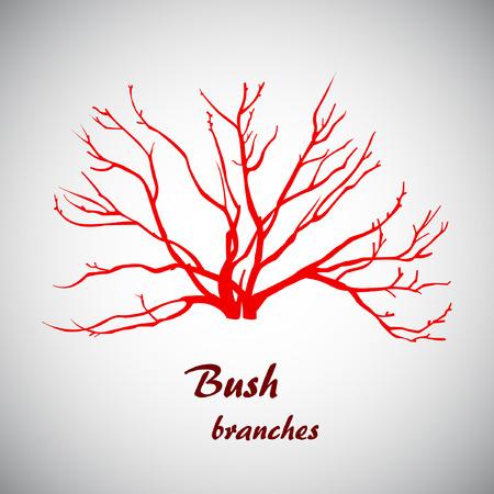 darck: Vector illustrator of bush branches.