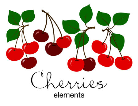 A Vector illustration of red cherries