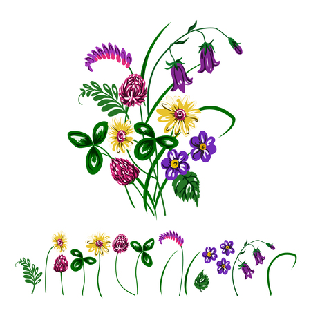 Vector illustration of bouquet made from wildflowers. Clower, trefoil, chamomile, bluebells and green grass.