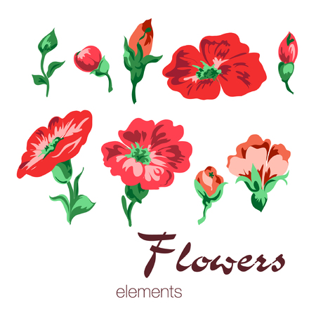 Illustration of colorful flowers elements.