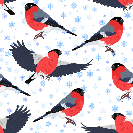 Vector illustration of bullfinch and snowflakes seamless pattern. Colorful birds and blue snowflakes on white background.