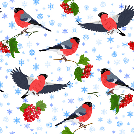 Vector illustration of bullfinch, guelder-rose and snowflakes seamless pattern. Colorful birds and berries on top of blue snowflakes background. Çizim