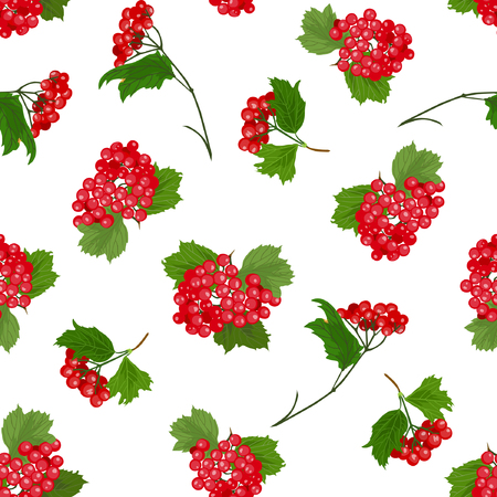 Vector illustration of guelder-rose branches seamless pattern. Red berries, green leaves on white background. Hand drawn.