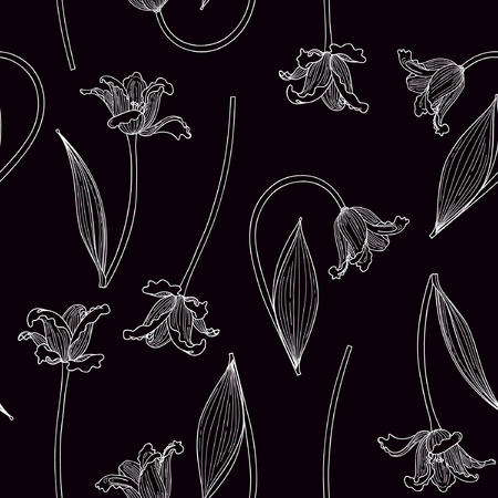 Vector illustration of hand drawn white tulips on black background. Seamless pattern.