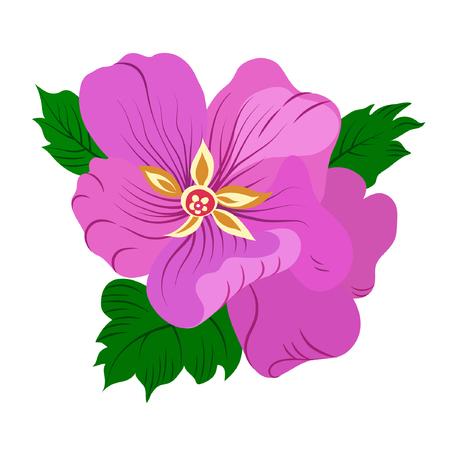 Vector illustration of violet flower with green leaves. Hand drawn. Illustration