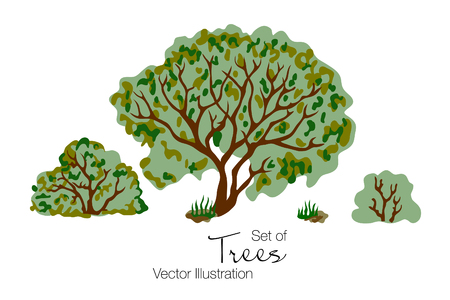 A Vector illustration of tree, bush and grass on white background.