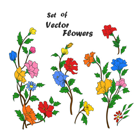 Set of hand drawing branches with flowers. Colorful flowers, buttons and leaves on a branch. Vector illustration. Çizim
