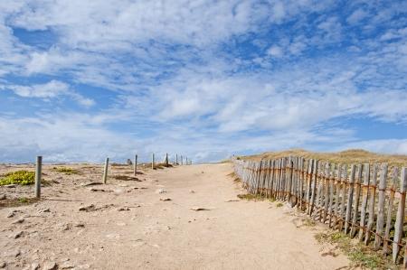 Trails in den D�nen an der wilden K�ste von Quiberon, Bretagne Lizenzfreie Bilder
