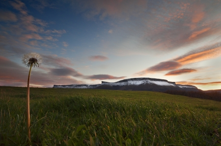 sierra snow: Sierra Salvada mountains with snow at the sunset seen from the meadows and a dandelion