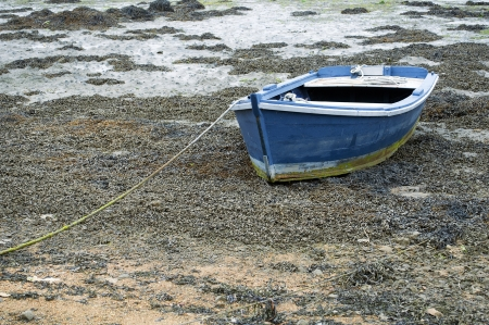 rowboat: small fishing boat moored in the sand
