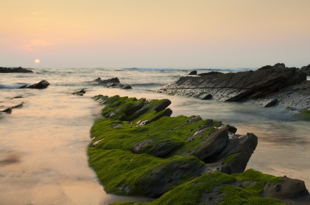 Gr�ne Algen in den Felsen bei Sonnenuntergang in Barrika Strand, Spanien Lizenzfreie Bilder