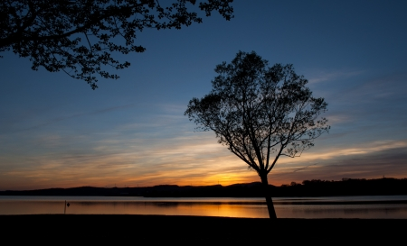 silhouette of a tree at sunset in the reservoir Garaio, Spain
