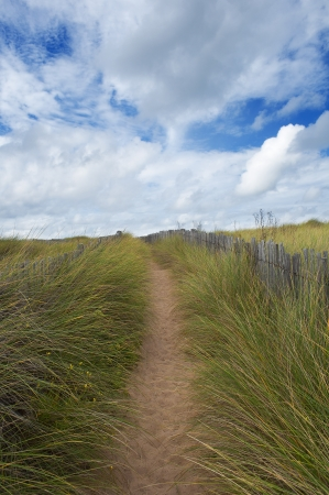 path surrounded by wooden fence on the dunes, Quiberon, France