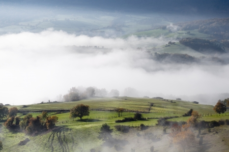 green pasture with trees and shrubs, on a cold morning with fog in the valley Stock Photo - 16824782