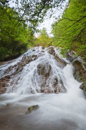 waterfall surrounded by trees with green leaves
