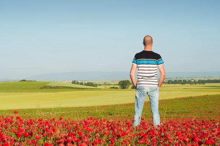 Man standing in a red poppy field