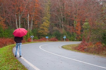 Man with an umbrella walking on a forest road. Rainy autumn day photo