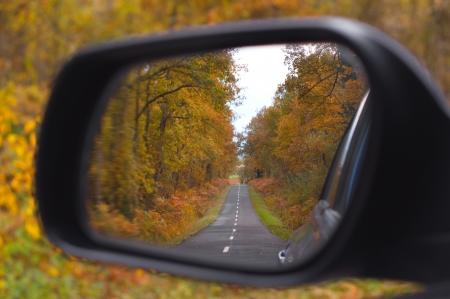 車のバックミラー。秋の木の風景