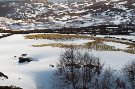 Snowy fields Stock Photo