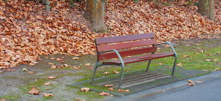 Bank in a park full of autumn leaves Stock Photo