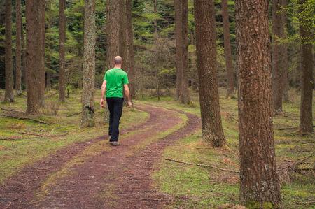 Junger Mann zu Fu� auf einem Pfad in einem Pinienwald im Herbst