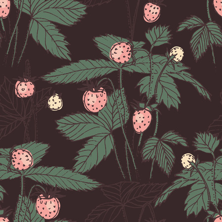 fragaria: Fragaria on dark background. Retro hand drawn print. Vector seamless pattern for fabric Illustration