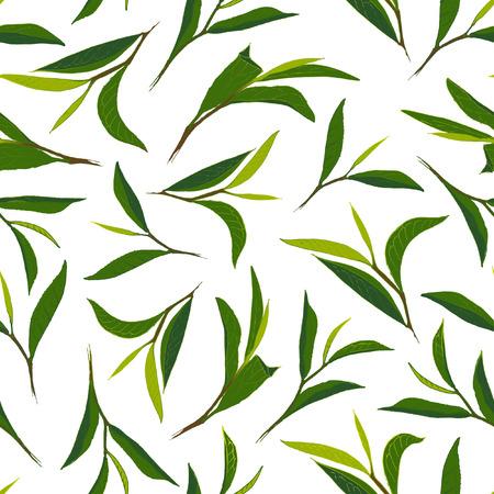 pure: Pure tea. Botanical style seamless pattern