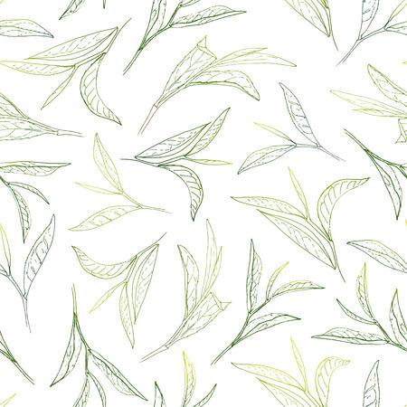 las hojas del té con sol. Modelo inconsútil de la pintada a mano