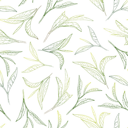 Sunny tea leafs. Hand-painted seamless pattern Illustration